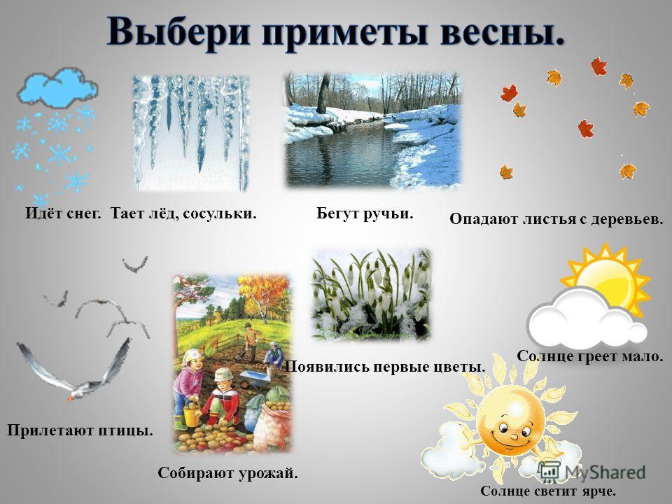 Идёт снег.Тает лёд, сосульки.Бегут ручьи. Опадают листья с деревьев. Прилетают птицы. Собирают урожай. Появились первые цветы. Солнце греет мало. Солнце светит ярче.