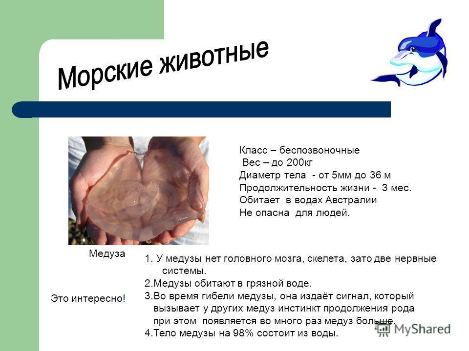 1. У медузы нет головного мозга, скелета, зато две нервные системы. 2.Медузы обитают в грязной воде. 3.Во время гибели медузы, она издаёт сигнал, который вызывает у других медуз инстинкт продолжения рода при этом появляется во много раз медуз больше.