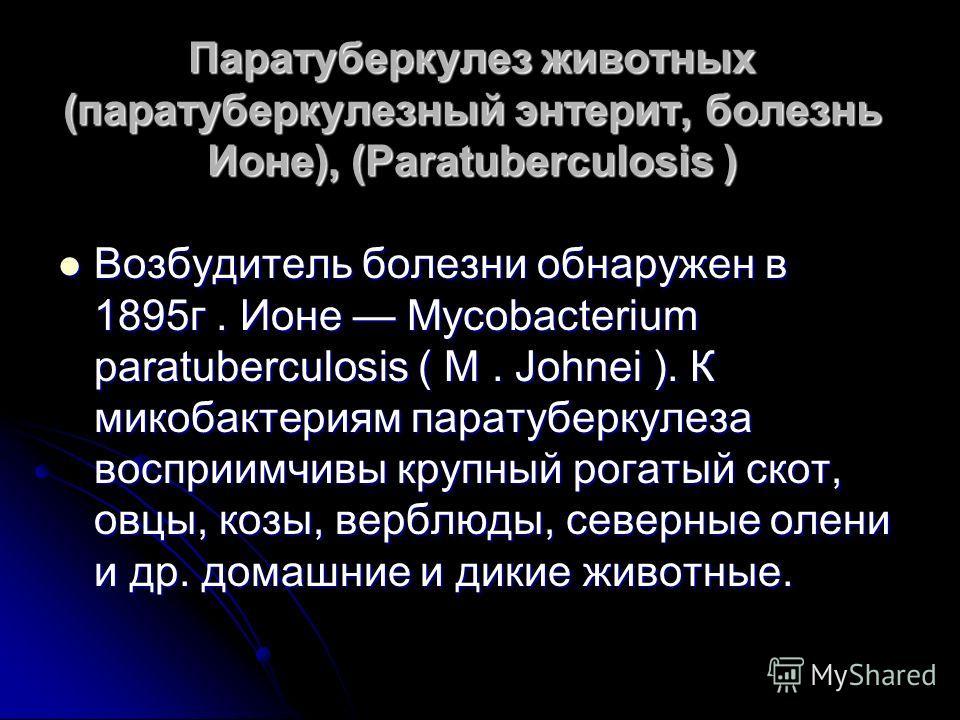 Паратуберкулез животных (паратуберкулезный энтерит, болезнь Ионе), (Paratuberculosis ) Возбудитель болезни обнаружен в 1895г. Ионе Mycobacterium paratuberculosis ( M. Johnei ). К микобактериям паратуберкулеза восприимчивы крупный рогатый скот, овцы,