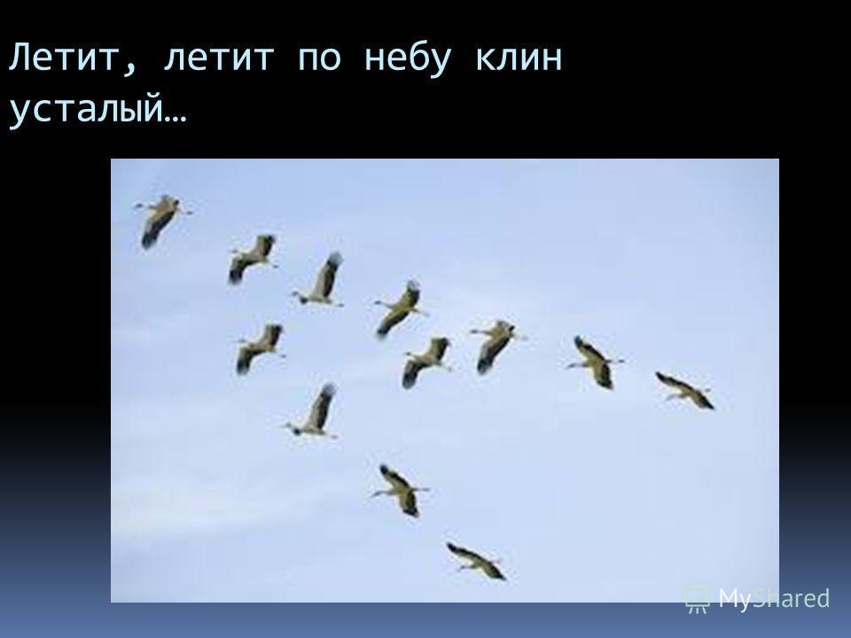 Летит, летит по небу клин усталый…