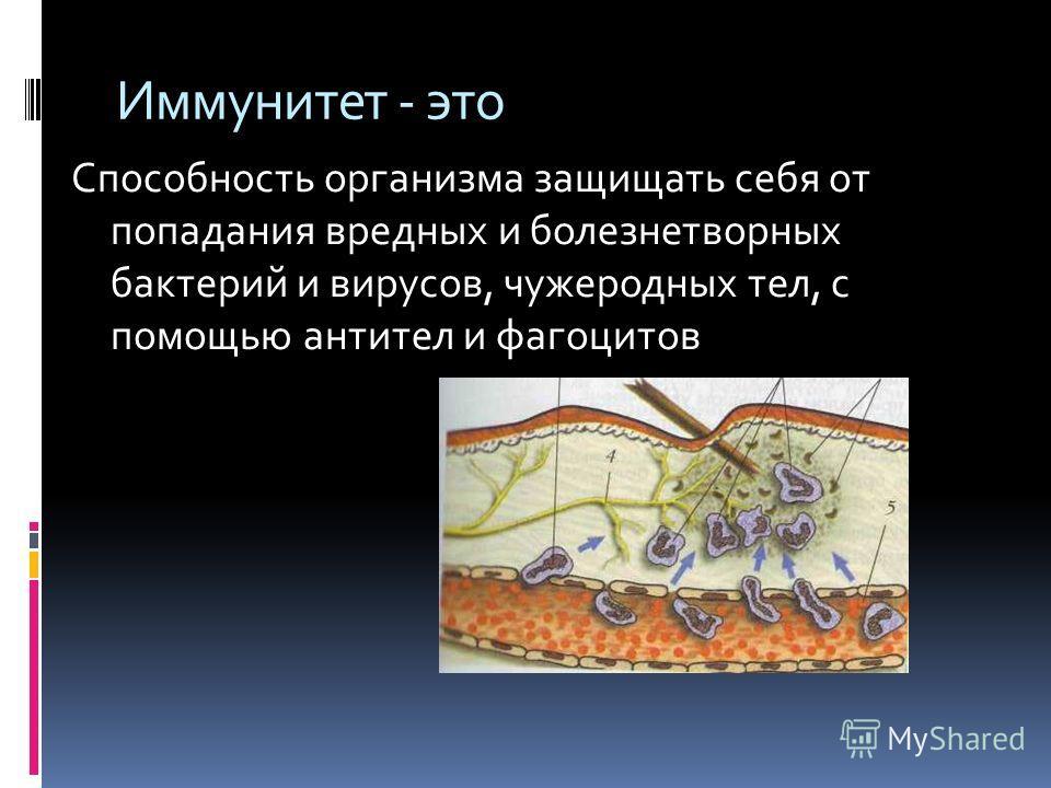 Задачи Для того, чтобы ответить на поставленный вопрос нужно узнать: Что такое иммунитет? Какие учёные занимались изучением иммунитета? Виды иммунитета Механизмы иммунитета