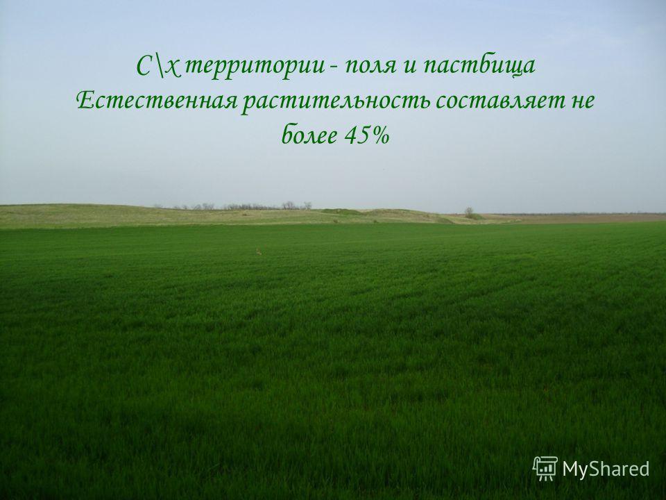 С\х территории - поля и пастбища Естественная растительность составляет не более 45%