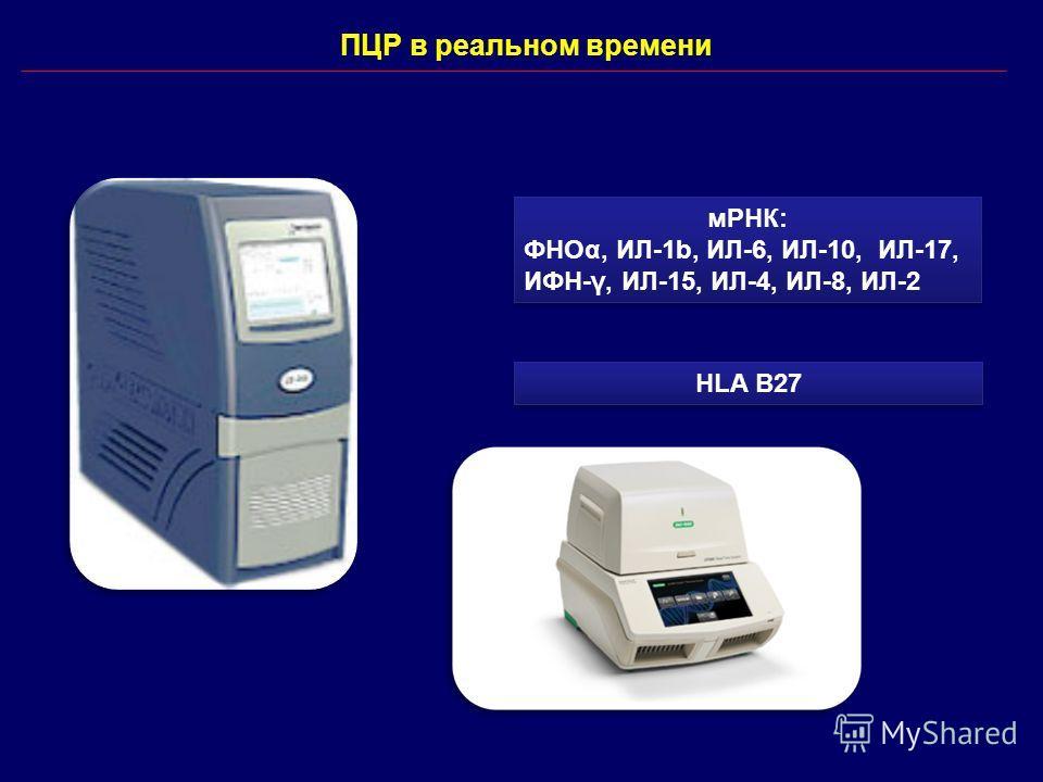 ПЦР в реальном времени мРНК: ФНОα, ИЛ-1b, ИЛ-6, ИЛ-10, ИЛ-17, ИФН-γ, ИЛ-15, ИЛ-4, ИЛ-8, ИЛ-2 мРНК: ФНОα, ИЛ-1b, ИЛ-6, ИЛ-10, ИЛ-17, ИФН-γ, ИЛ-15, ИЛ-4, ИЛ-8, ИЛ-2 HLA B27