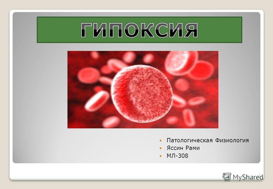 Патологическая Физиология Яссин Рами МЛ-308 1