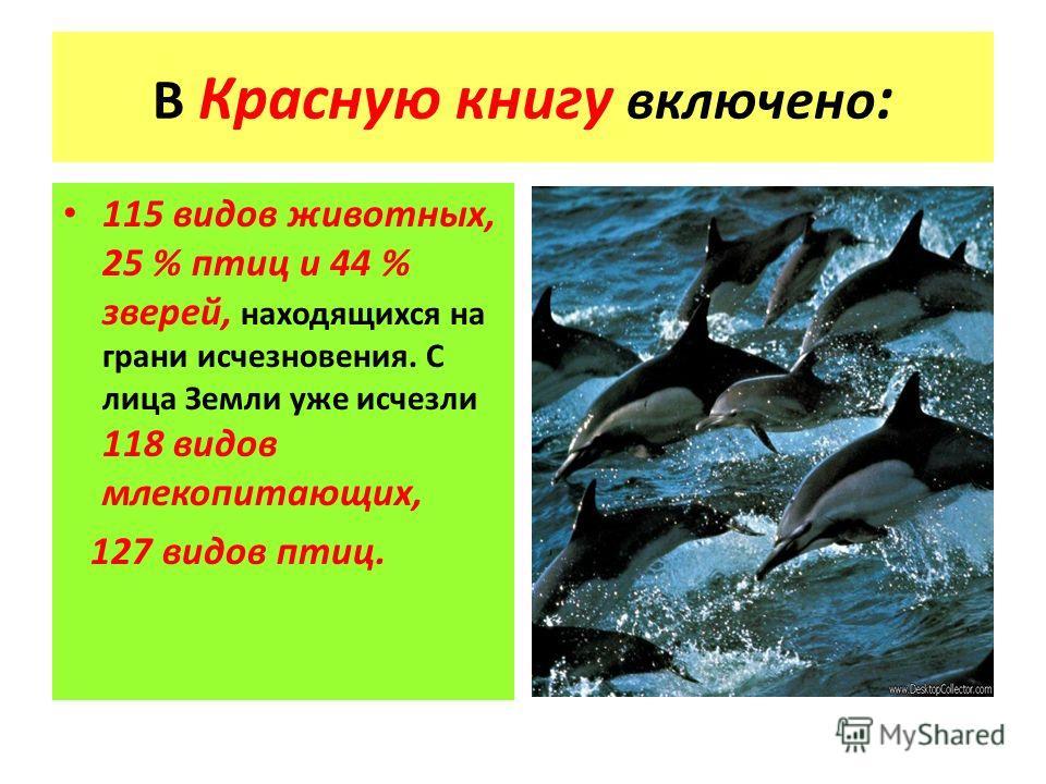 В Красную книгу включено : 115 видов животных, 25 % птиц и 44 % зверей, находящихся на грани исчезновения. С лица Земли уже исчезли 118 видов млекопитающих, 127 видов птиц.