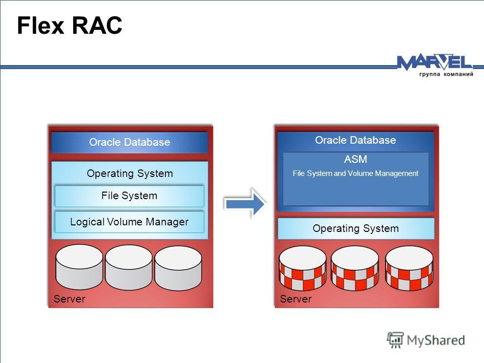Flex RAC Server Oracle Database Operating System Logical Volume Manager File System Server Oracle Database Operating System ASM File System and Volume Management