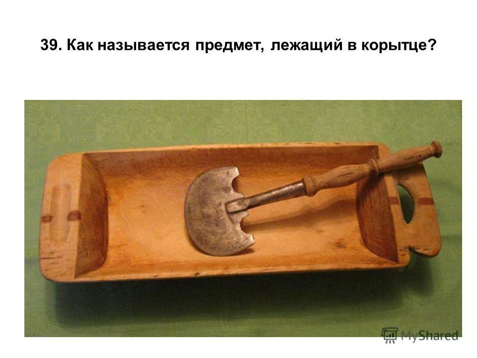 39. Как называется предмет, лежащий в корытце?