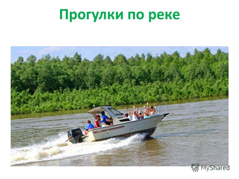 Прогулки по реке