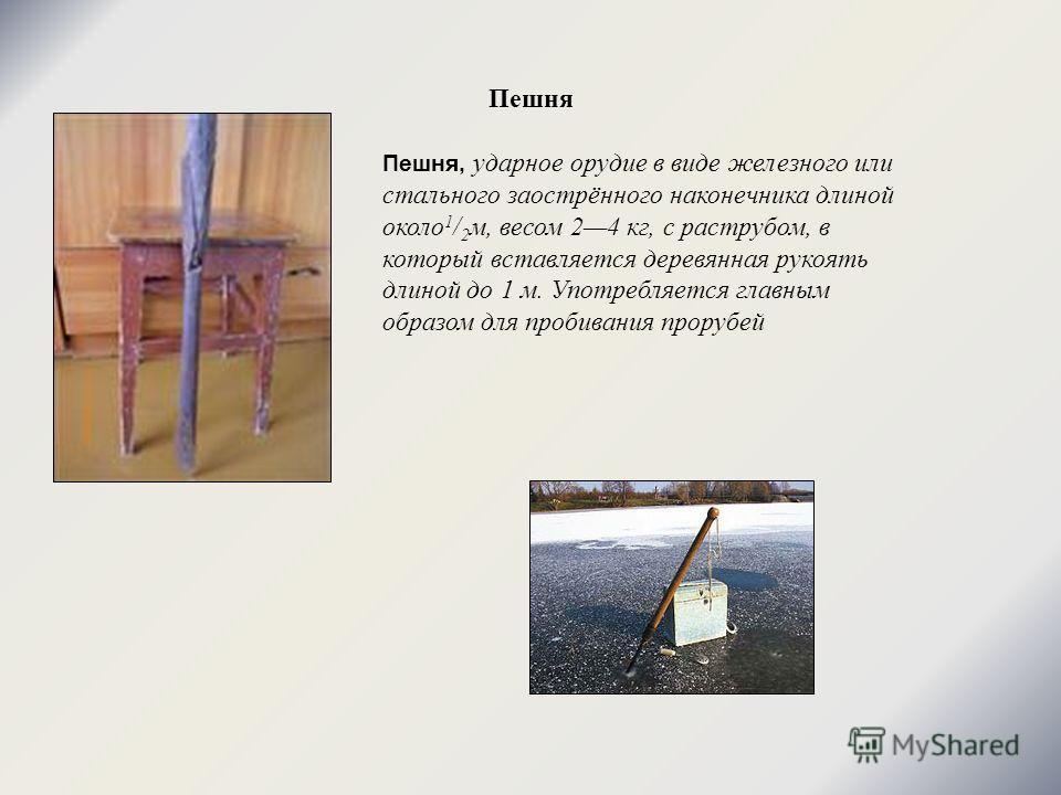Пешня Пешня, ударное орудие в виде железного или стального заострённого наконечника длиной около 1 / 2 м, весом 24 кг, с раструбом, в который вставляется деревянная рукоять длиной до 1 м. Употребляется главным образом для пробивания прорубей