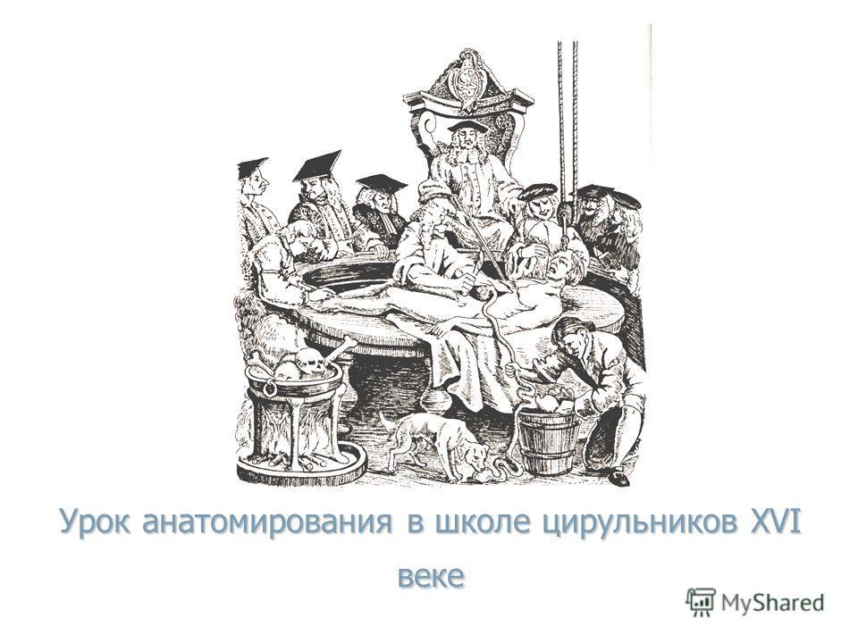 Урок анатомирования в школе цирульников XVI веке