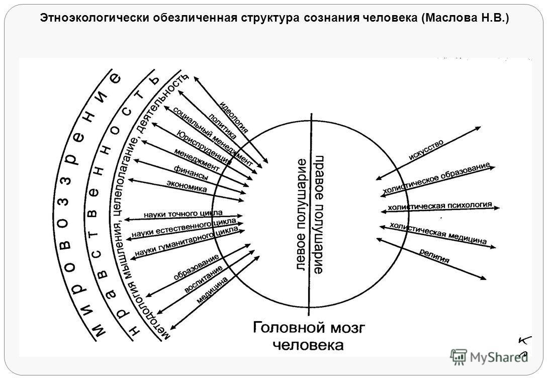 Этноэкологически обезличенная структура сознания человека (Маслова Н.В.)