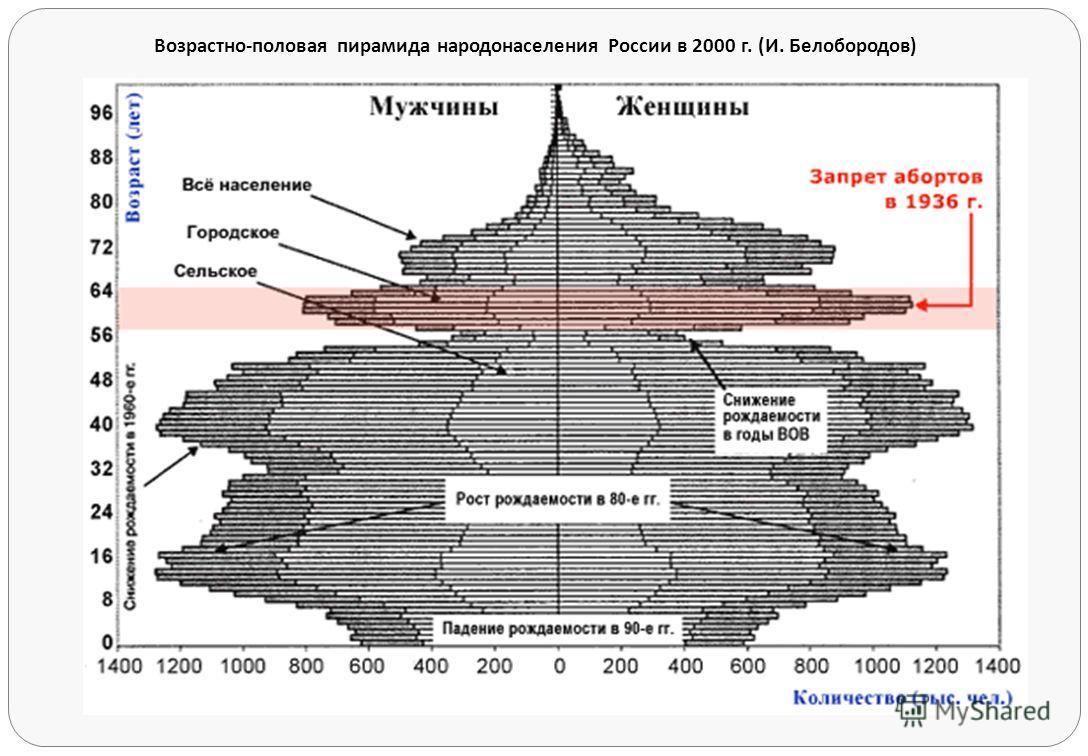 Возрастно - половая пирамида народонаселения России в 2000 г. ( И. Белобородов )