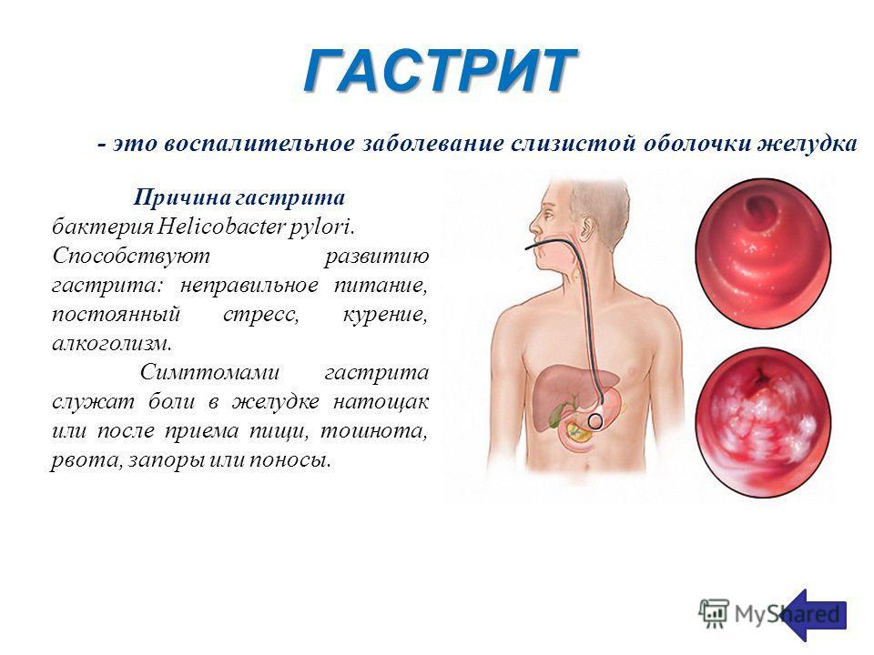 ГАСТРИТ - это воспалительное заболевание слизистой оболочки желудка Причина гастрита бактерия Helicobacter pylori. Способствуют развитию гастрита: неправильное питание, постоянный стресс, курение, алкоголизм. Симптомами гастрита служат боли в желудке