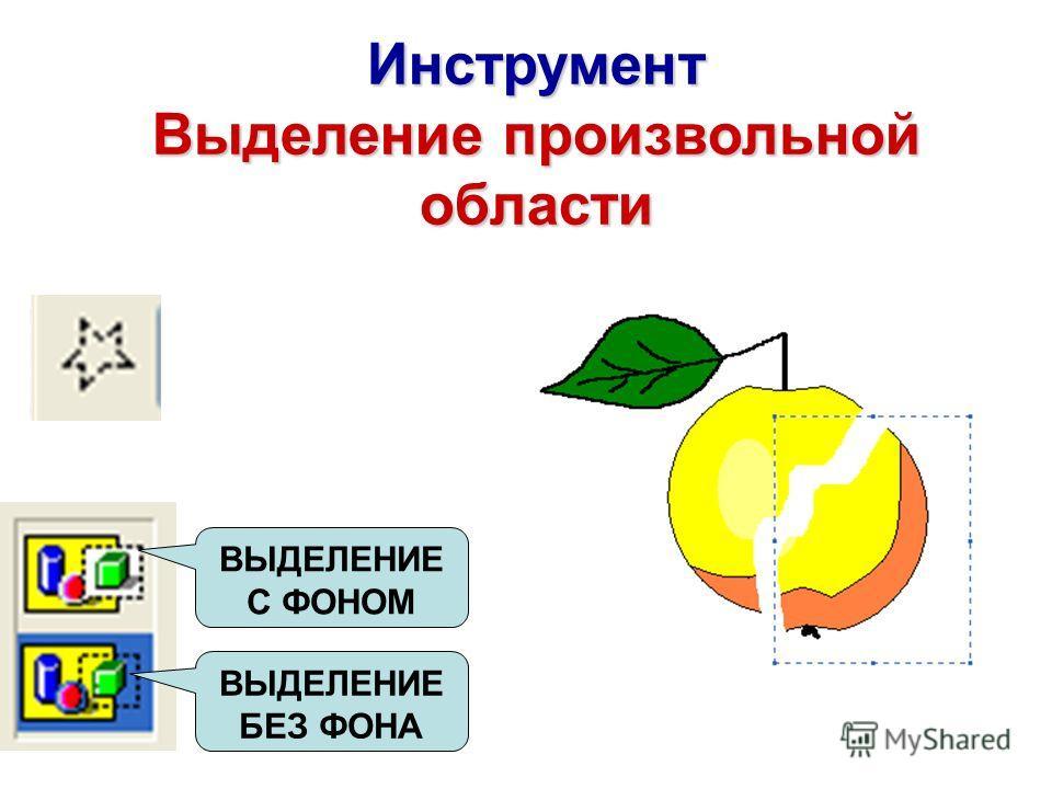 Инструмент Выделение произвольной области ВЫДЕЛЕНИЕ БЕЗ ФОНА ВЫДЕЛЕНИЕ С ФОНОМ