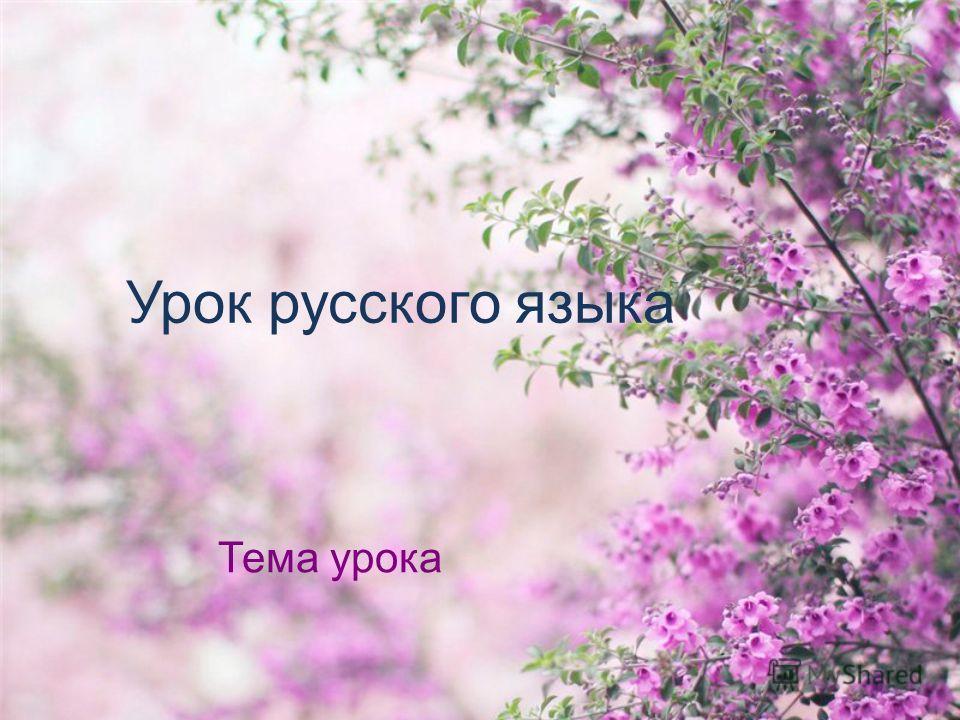 Урок русского языка Тема урока