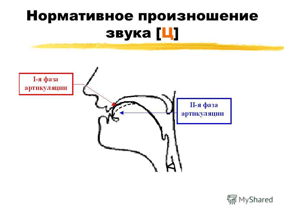 Нормативное произношение звука [Ц]