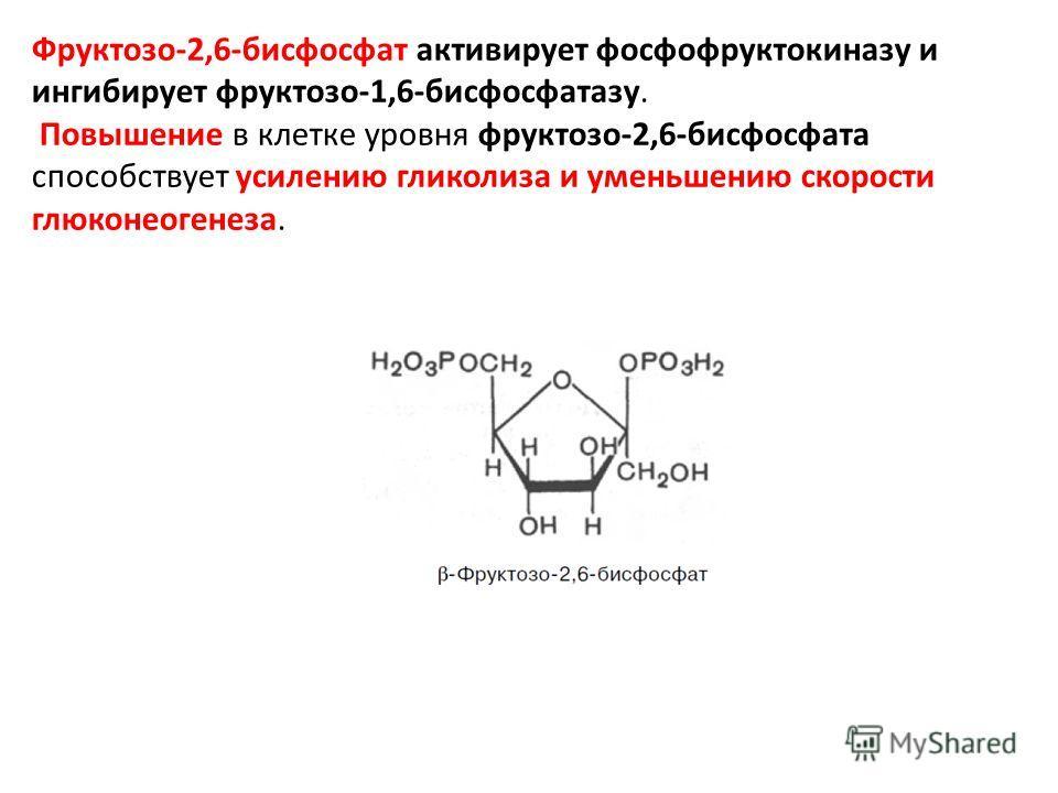 Фруктозо-2,6-бисфосфат активирует фосфофруктокиназу и ингибирует фруктозо-1,6-бисфосфатазу. Повышение в клетке уровня фруктозо-2,6-бисфосфата способствует усилению гликолиза и уменьшению скорости глюконеогенеза.
