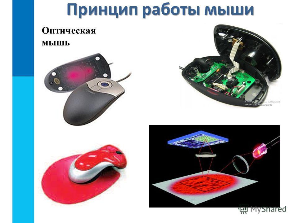 Оптическая мышь Принцип работы мыши