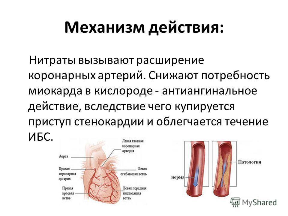 Механизм действия: Нитраты вызывают расширение коронарных артерий. Снижают потребность миокарда в кислороде - антиангинальное действие, вследствие чего купируется приступ стенокардии и облегчается течение ИБС.