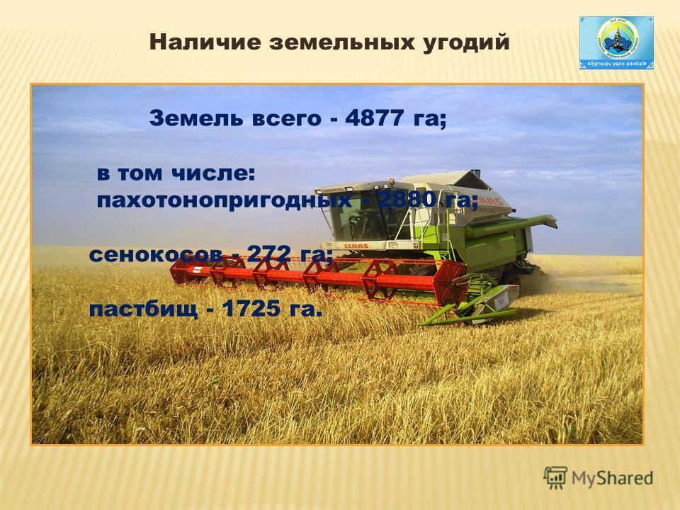 Наличие земельных угодий Земель всего - 4877 га; в том числе: пахотонопригодных - 2880 га; сенокосов - 272 га; пастбищ - 1725 га. Земель всего - 4877 га; в том числе: пахотонопригодных - 2880 га; сенокосов - 272 га; пастбищ - 1725 га.