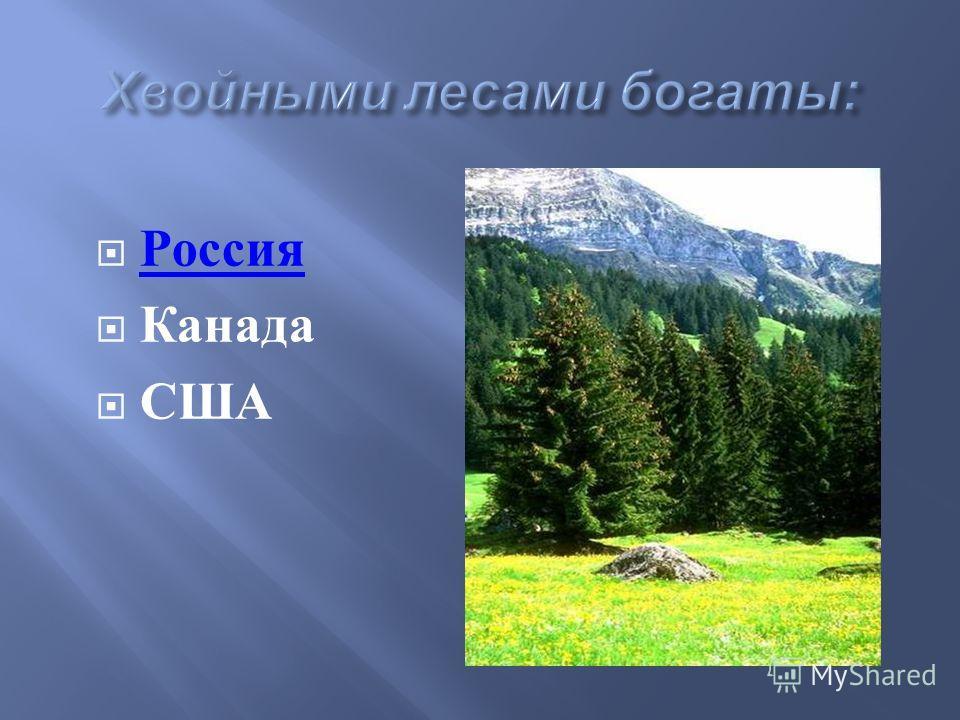 Россия Канада США