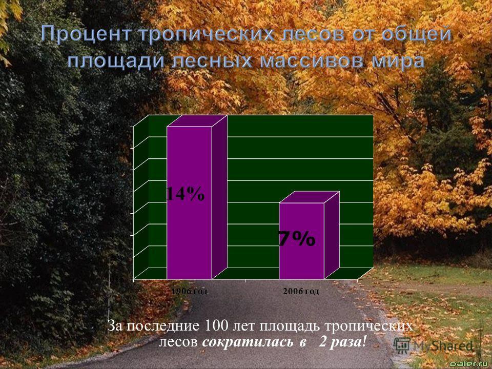 За последние 100 лет площадь тропических лесов сократилась в 2 раза !