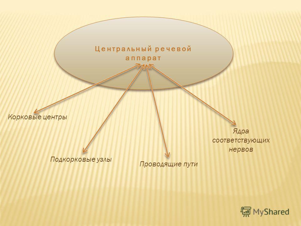 Центральный речевой аппарат Корковые центры Подкорковые узлы Проводящие пути Ядра соответствующих нервов