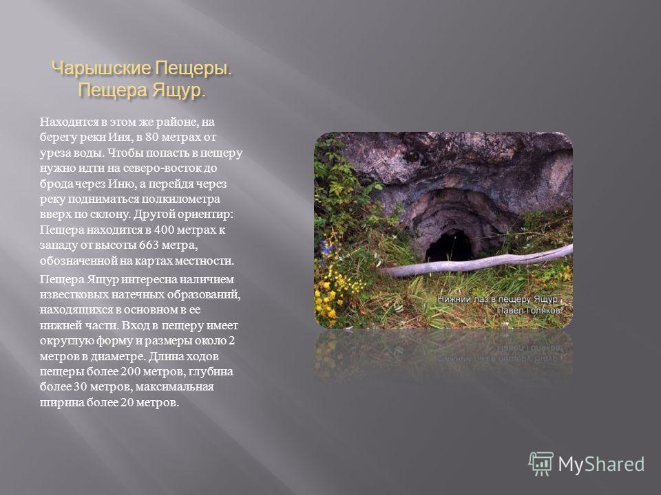 Чарышские Пещеры. Пещера Ящур. Находится в этом же районе, на берегу реки Иня, в 80 метрах от уреза воды. Чтобы попасть в пещеру нужно идти на северо - восток до брода через Иню, а перейдя через реку подниматься полкилометра вверх по склону. Другой о