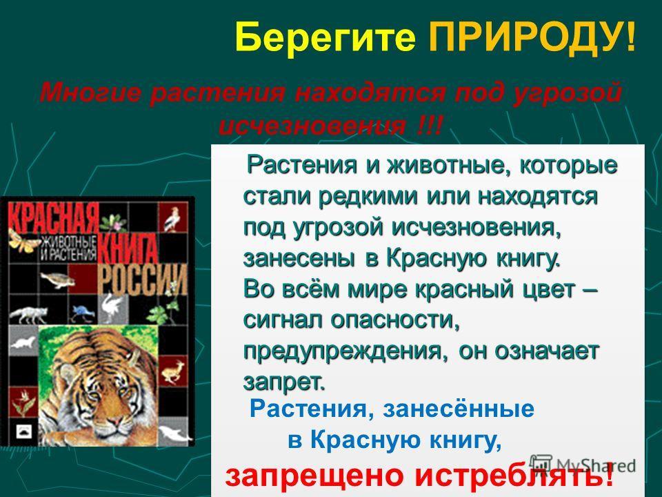 Берегите ПРИРОДУ! Многие растения находятся под угрозой исчезновения !!! Растения и животные, которые стали редкими или находятся под угрозой исчезновения, занесены в Красную книгу. Во всём мире красный цвет – сигнал опасности, предупреждения, он озн