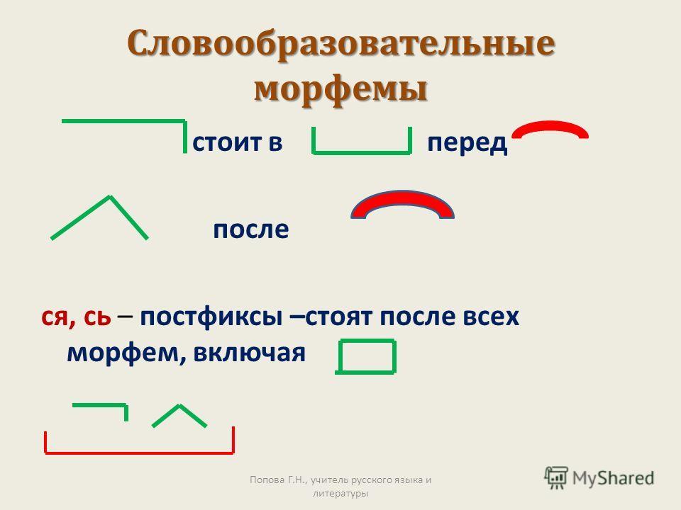 Словообразовательные морфемы стоит в перед после ся, сь – постфиксы –стоят после всех морфем, включая Попова Г.Н., учитель русского языка и литературы