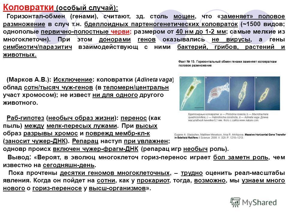 Коловратки (особый случай): Горизонтал-обмен (генами), считают, зд. столь мощен, что «заменяет» половое размножение в случ т.н. бделлоидных партеногенетических коловраток (~1500 видов; однополые первично-полостные черви; размером от 40 нм до 1-2 мм;