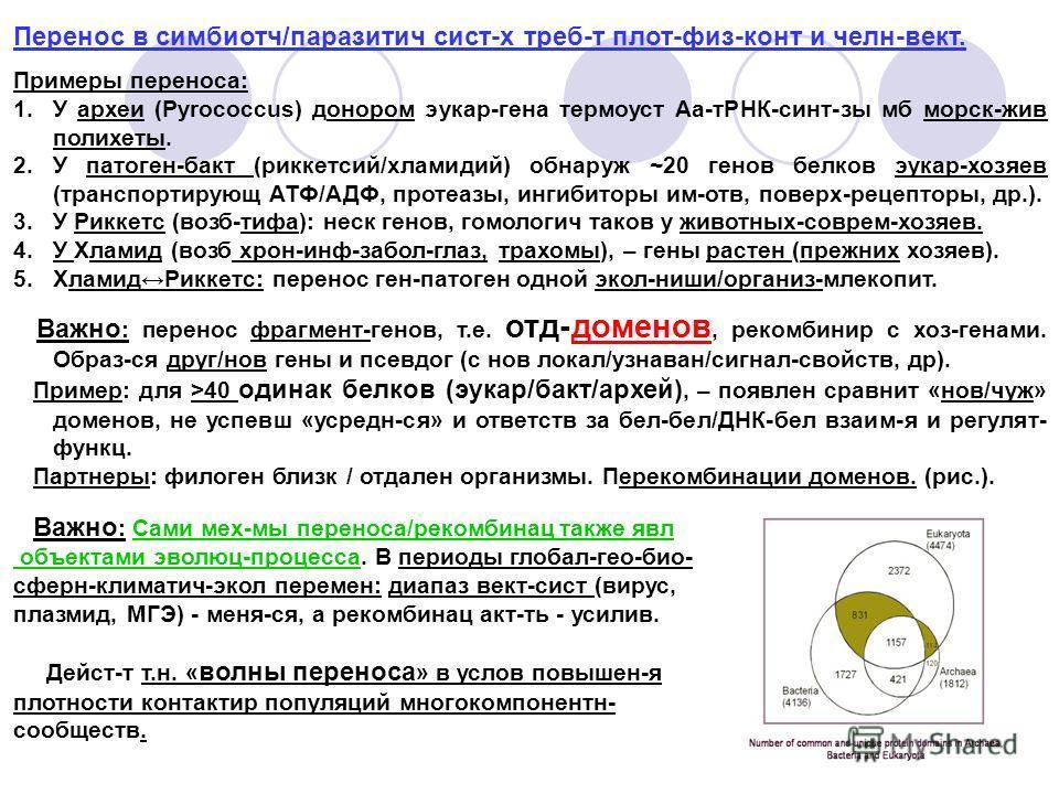 Перенос в симбиотч/паразитич сист-х треб-т плот-физ-конт и челн-вект. Примеры переноса: 1.У археи (Pyrococcus) донором эукар-гена термоуст Аа-тРНК-синт-зы мб морск-жив полихеты. 2.У патоген-бакт (риккетсий/хламидий) обнаруж ~20 генов белков эукар-хоз