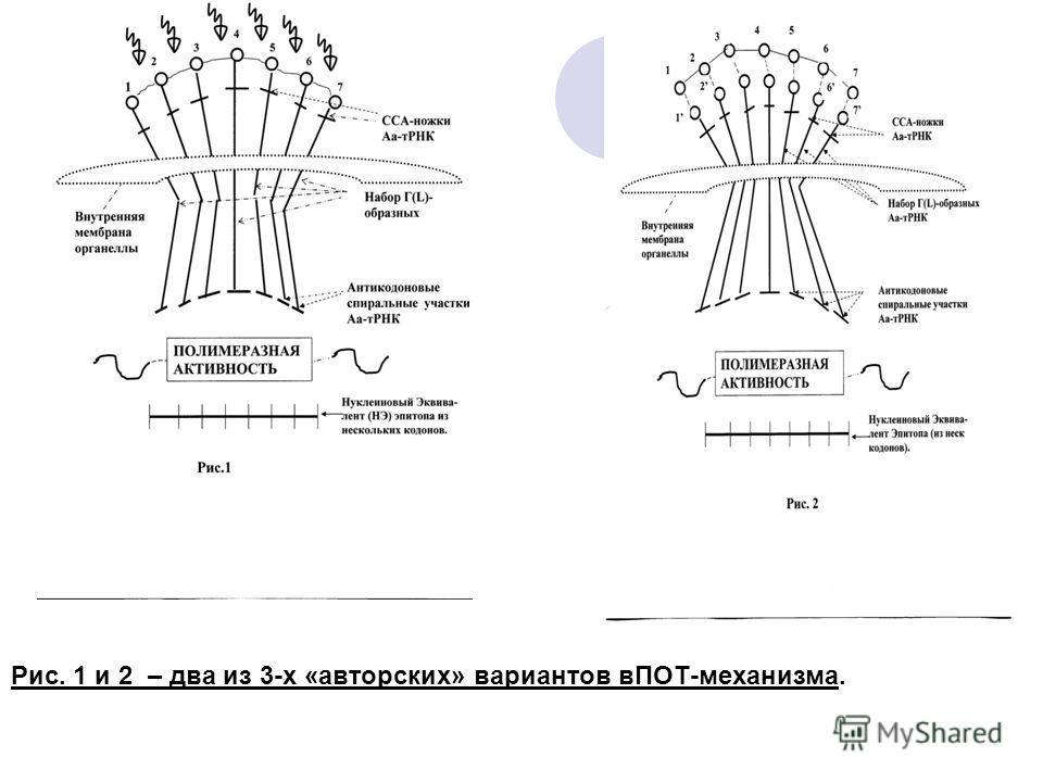 Рис. 1 и 2 – два из 3-х «авторских» вариантов вПОТ-механизма.