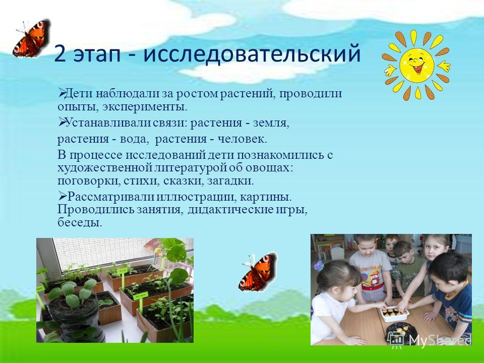 2 этап - исследовательский Дети наблюдали за ростом растений, проводили опыты, эксперименты. Устанавливали связи: растения - земля, растения - вода, растения - человек. В процессе исследований дети познакомились с художественной литературой об овощах
