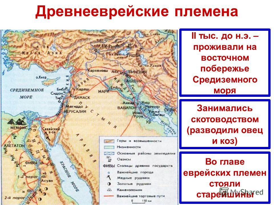 Древнееврейские племена II тыс. до н.э. – проживали на восточном побережье Средиземного моря Занимались скотоводством (разводили овец и коз) Во главе еврейских племен стояли старейшины