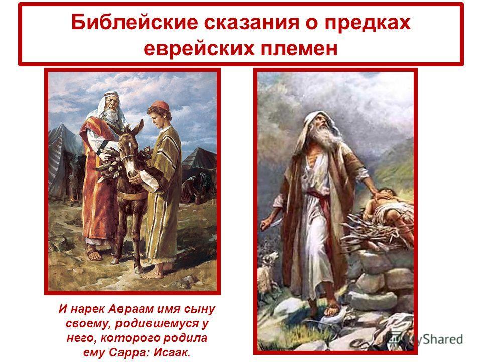 Библейские сказания о предках еврейских племен И нарек Авраам имя сыну своему, родившемуся у него, которого родила ему Сарра: Исаак.