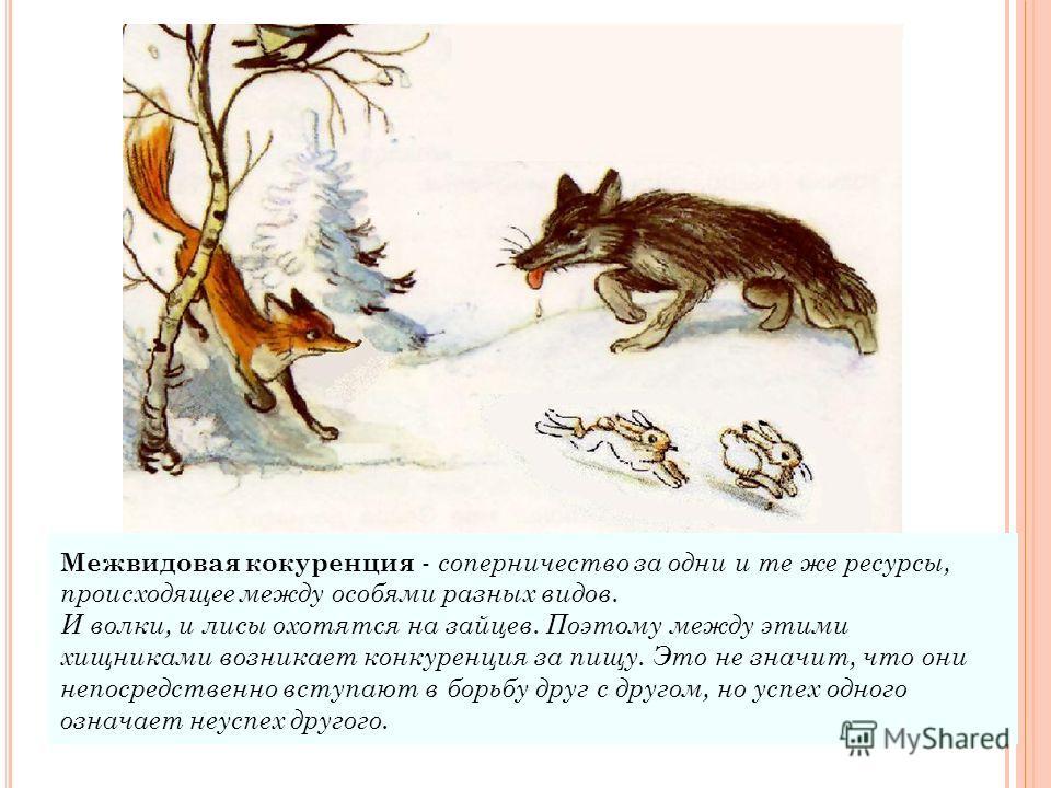 Межвидовая кокуренция - соперничество за одни и те же ресурсы, происходящее между особями разных видов. И волки, и лисы охотятся на зайцев. Поэтому между этими хищниками возникает конкуренция за пищу. Это не значит, что они непосредственно вступают в