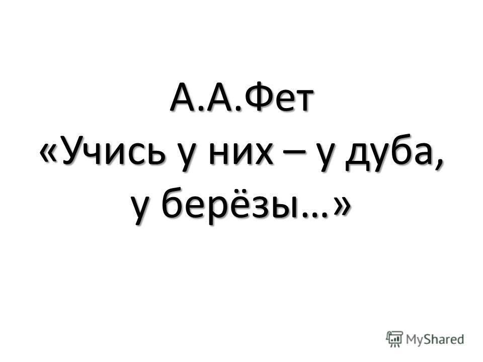 А.А.Фет «Учись у них – у дуба, у берёзы…»