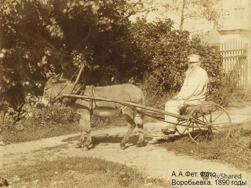 А.А.Фет. Фото. Воробьевка, 1890 годы