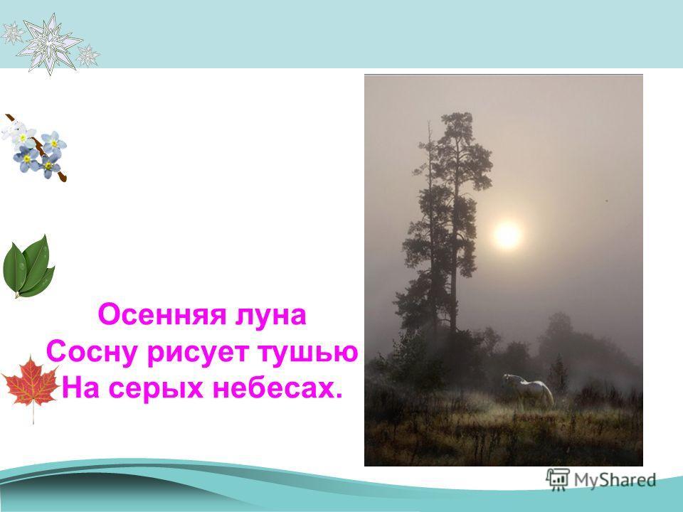 Осенняя луна Сосну рисует тушью На серых небесах.