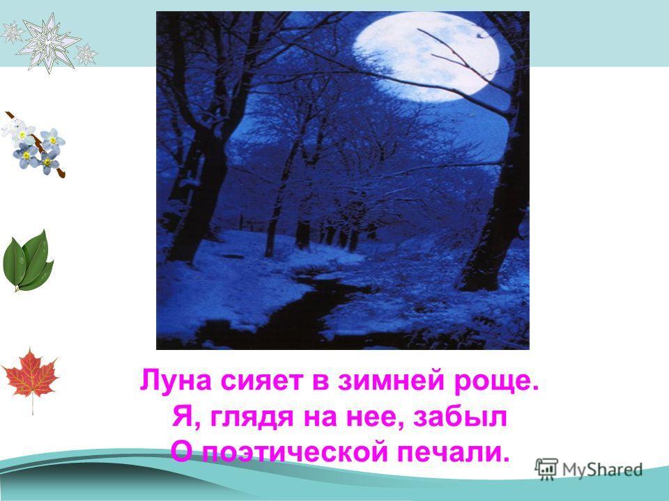 Луна сияет в зимней роще. Я, глядя на нее, забыл О поэтической печали.