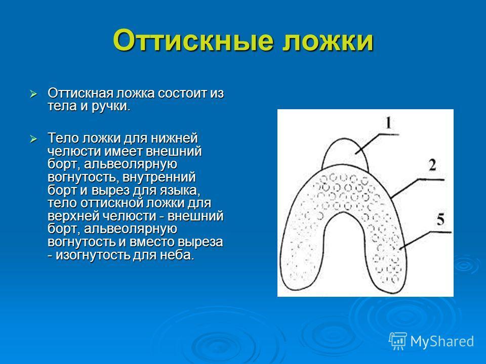 Оттискные ложки Оттискная ложка состоит из тела и ручки. Оттискная ложка состоит из тела и ручки. Тело ложки для нижней челюсти имеет внешний борт, альвеолярную вогнутость, внутренний борт и вырез для языка, тело оттискной ложки для верхней челюсти -