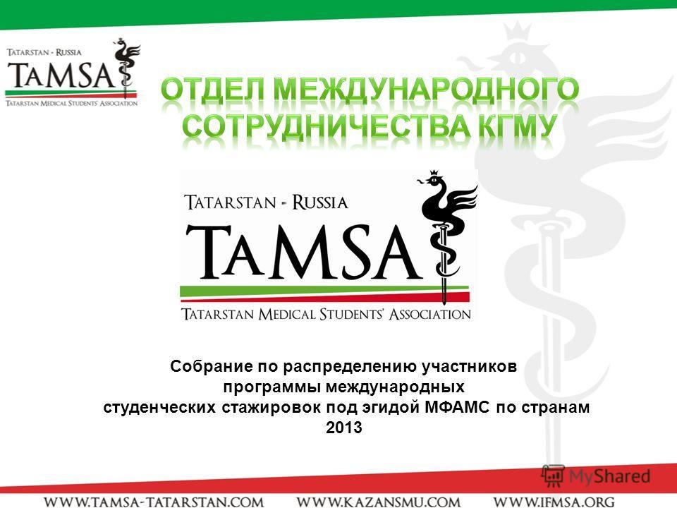 Cобрание по распределению участников программы международных студенческих стажировок под эгидой МФАМС по странам 2013