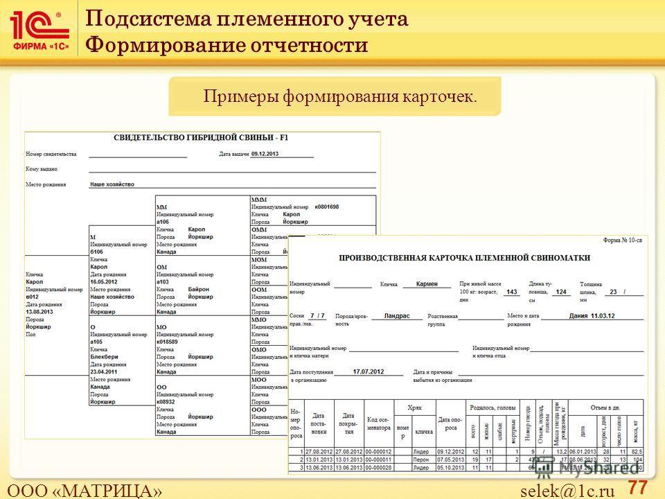 77 Примеры формирования карточек. Подсистема племенного учета Формирование отчетности ООО «МАТРИЦА» selek@1c.ru