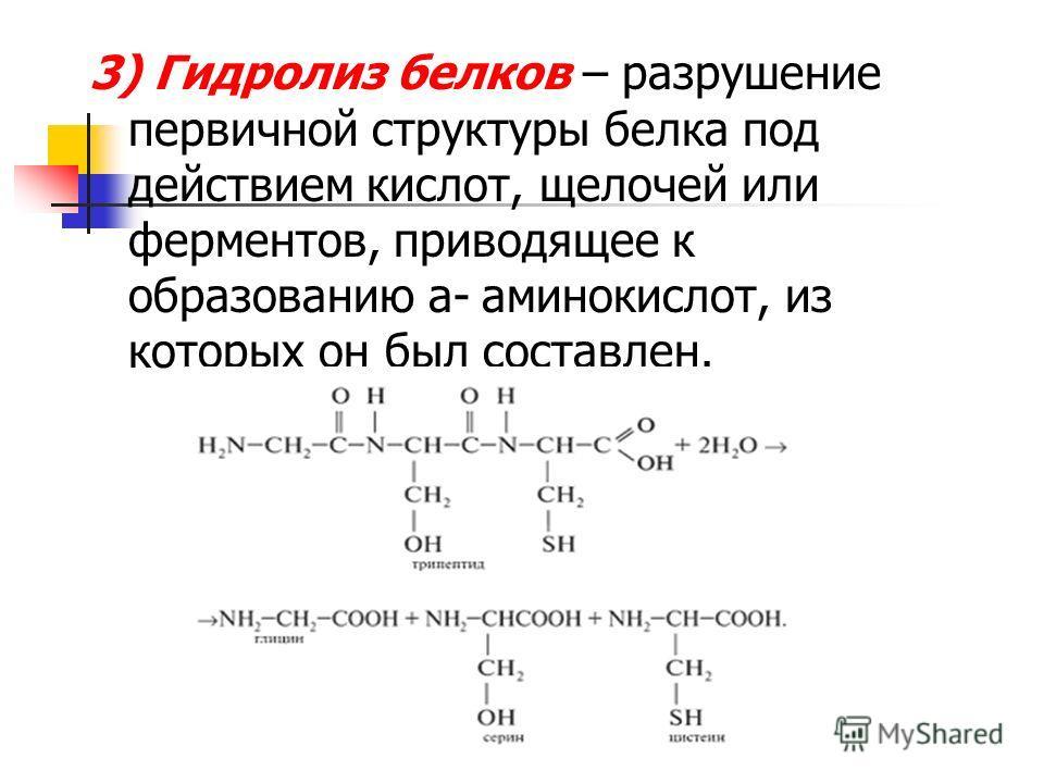 3) Гидролиз белков – разрушение первичной структуры белка под действием кислот, щелочей или ферментов, приводящее к образованию a- аминокислот, из которых он был составлен.
