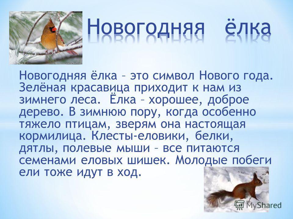 у ёлки символы у красавицы год пора под деревом около птиц к лесу для кормилиц к зверю у шишки клесты