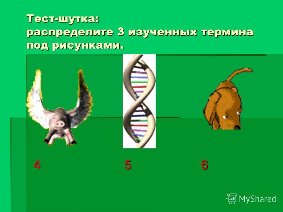 Тест-шутка: распределите 3 изученных термина под рисунками. 1 2 3