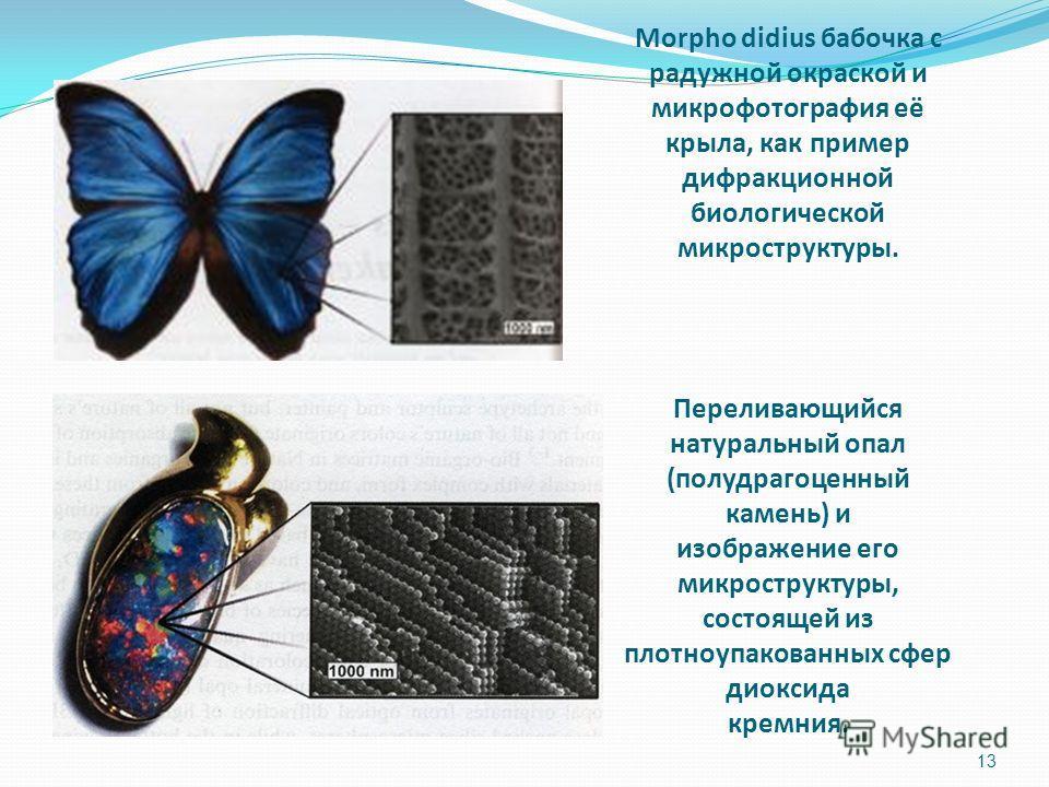Morpho didius бабочка с радужной окраской и микрофотография её крыла, как пример дифракционной биологической микроструктуры. Переливающийся натуральный опал (полудрагоценный камень) и изображение его микроструктуры, состоящей из плотноупакованных сфе