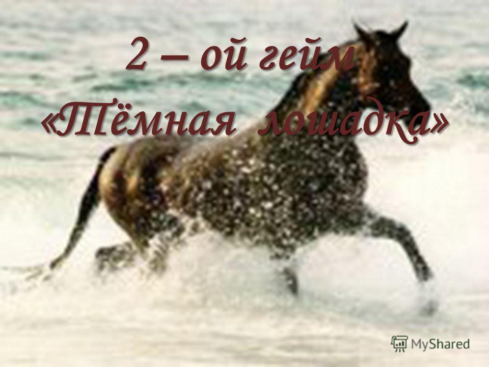 2 – ой гейм «Тёмная лошадка»