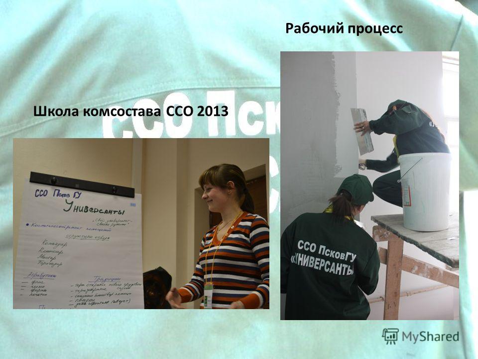 Школа комсостава ССО 2013 Рабочий процесс